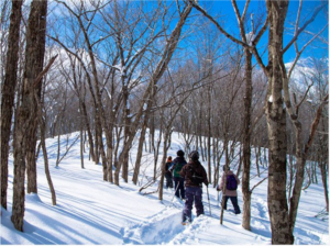 The next day of your stay, you can enjoy skiing at Hachimantai, and/or taking a snowshoe tour from the hotel.